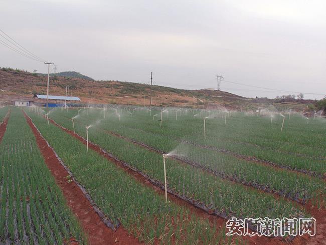 小农水项目成效显著.jpg
